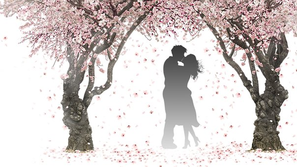 tunnel of love essay General commentthe tunnel of love is a metaphor for the journey a man takes when following the path of marriage with his new bridethe tunnel of love is an old amusement ride, usually found in the lower-budget carnivals and smalltime fairs.